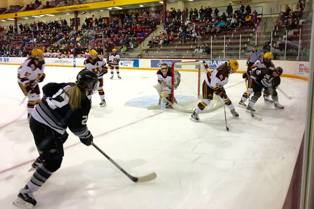 Minnesota Gophers playing the Minnesota Whitecaps in an exhibition game on 1/6/2017.