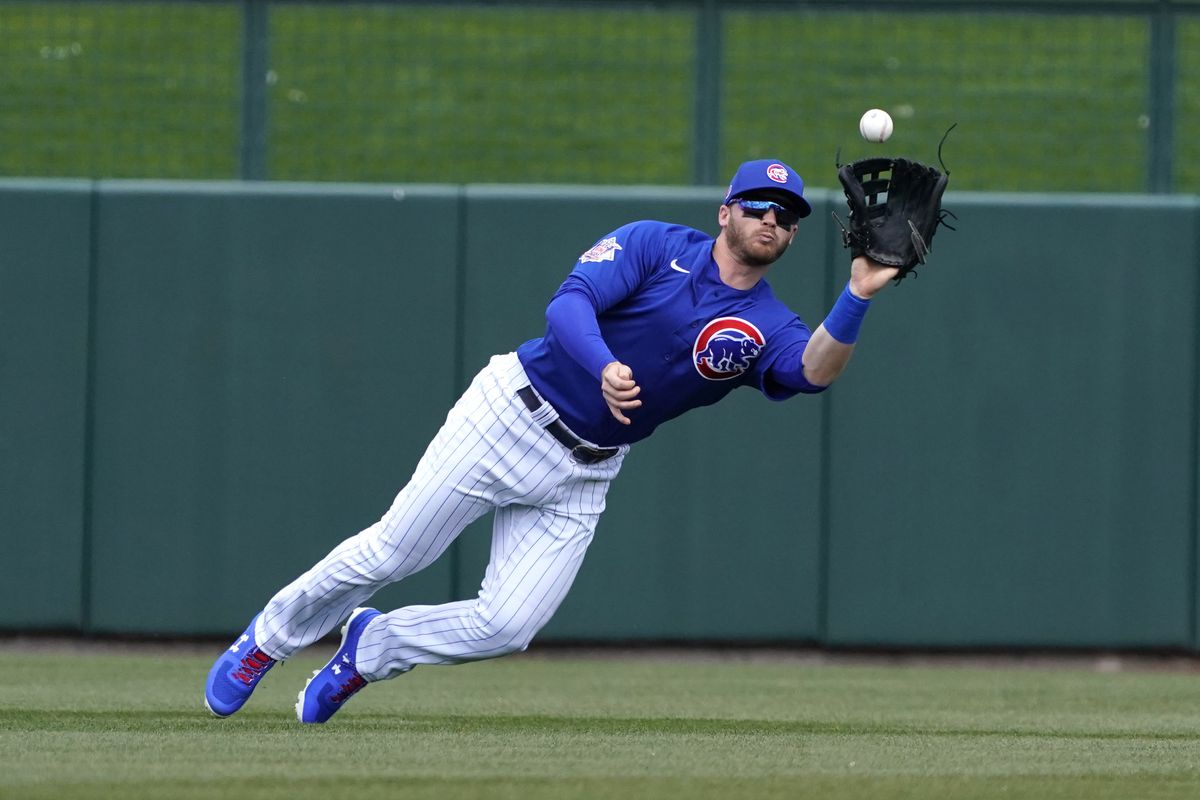 Chicago Cubs center fielder Ian Happ makes the diving catch against the Los Angeles Angels during a spring training game at Sloan Park.