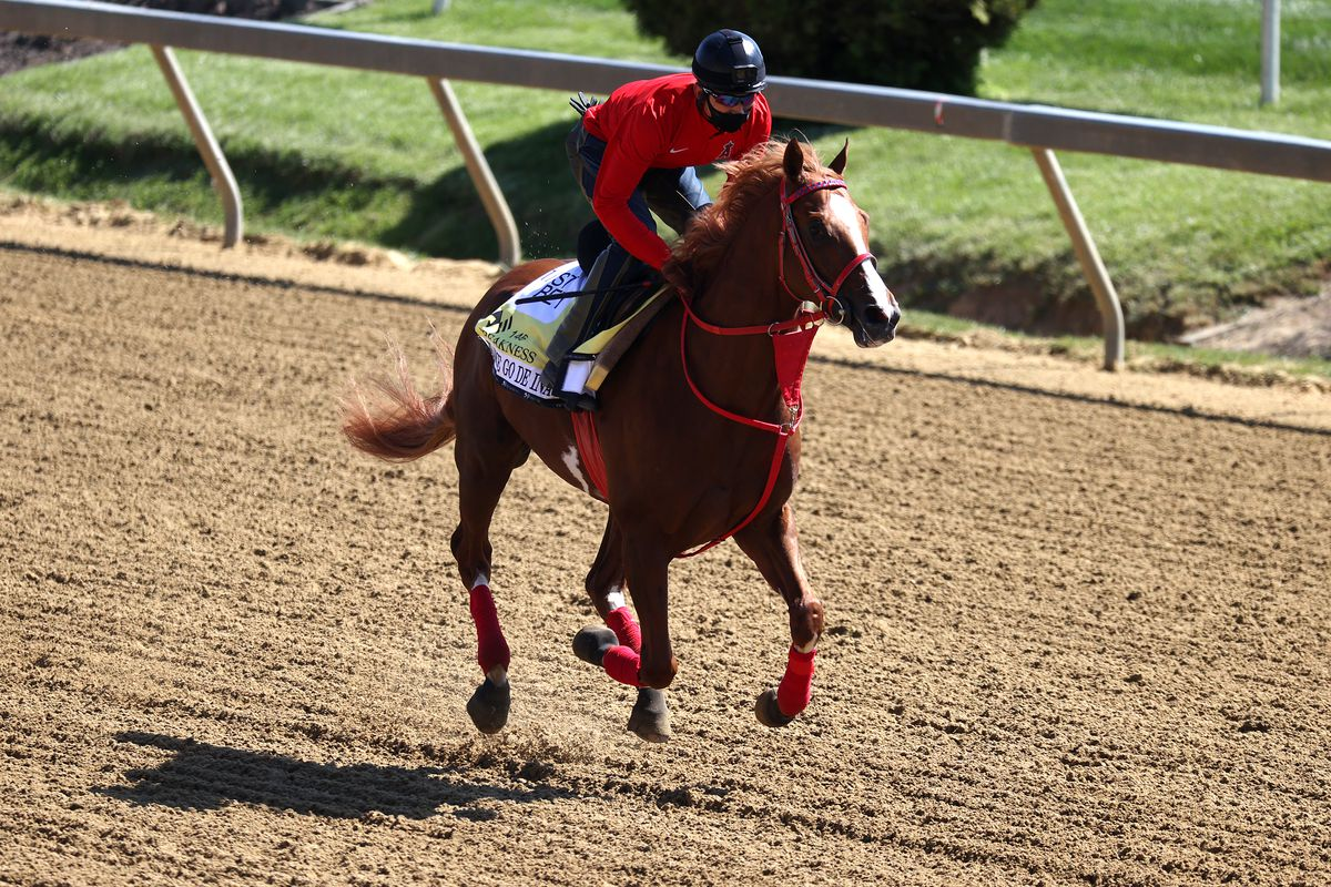 Preakness entrant France Go de Ina goes over the track during a training session for the upcoming Preakness Stakes at Pimlico Race Course on May 11, 2021 in Baltimore, Maryland.