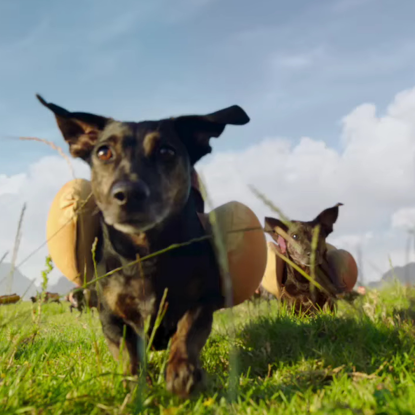 The 10 best Super Bowl 50 commercials — and the two worst