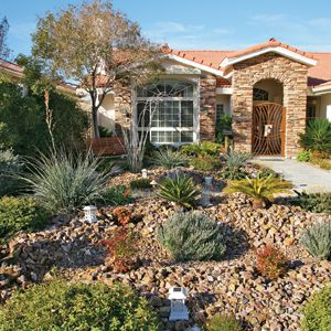 <p>Cash rebates help homeowners in the Las Vegas area replace their turf lawns with hardy, drought-resistant plants and rock gardens.</p>