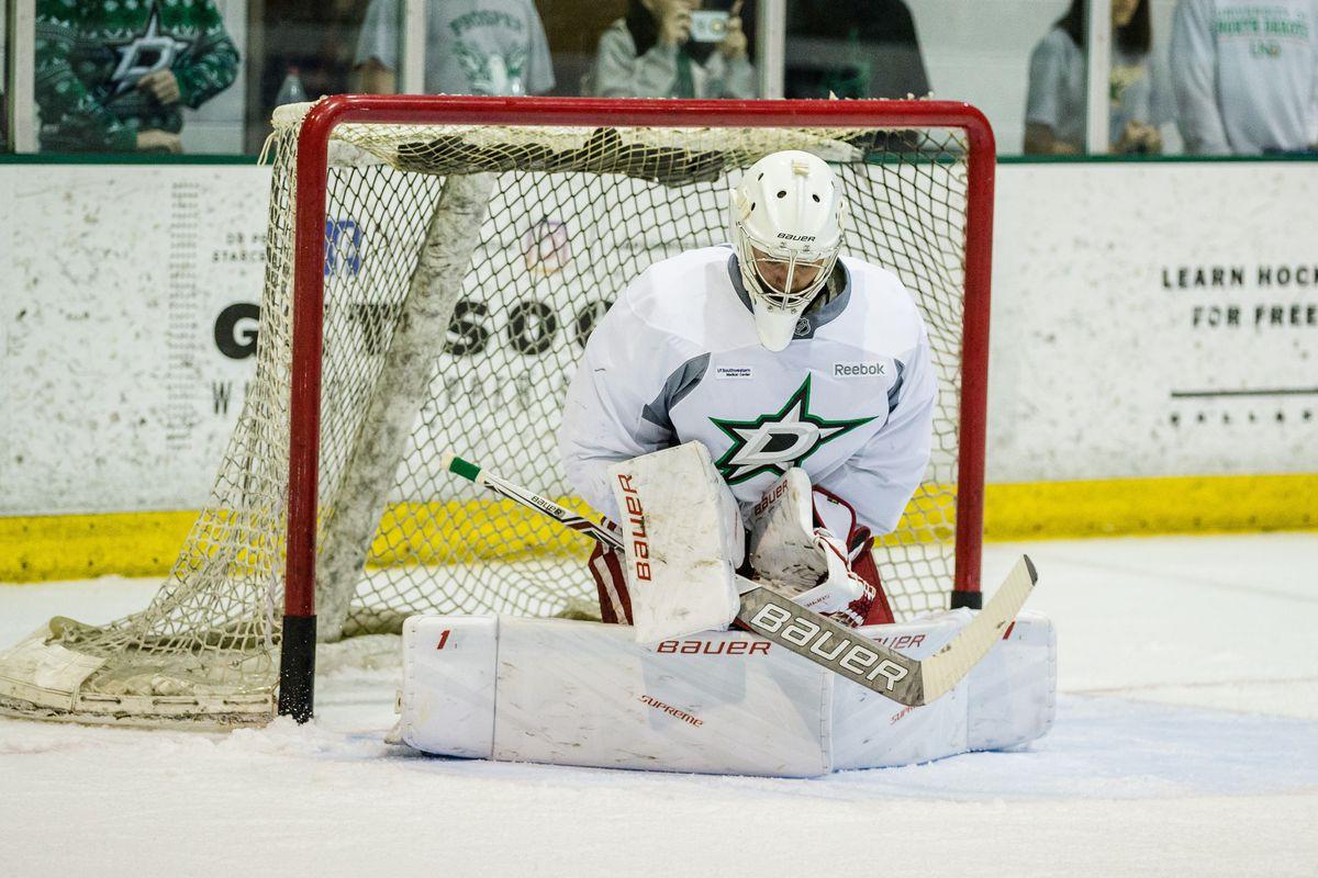 NHL: JUL 08 Stars Development Camp