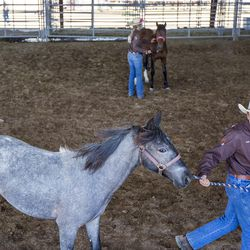 Keith Davenport, 14, jogs his horse to warm up while Rylee Sorensen, 14, practices a pivot in an arena at the Legacy Events Center during the Wild Horse and Burro Show in Farmington on Friday, June 9, 2017.