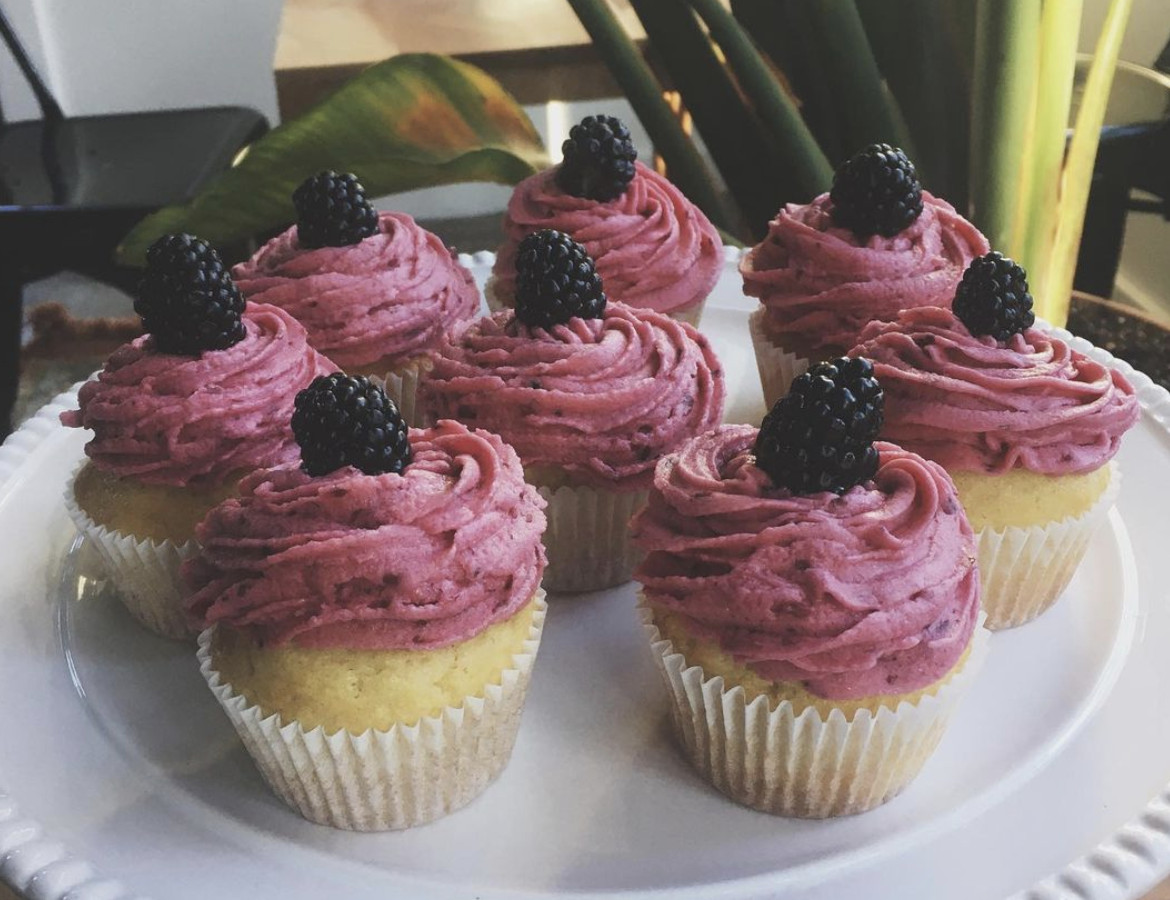 Lemon blackberry cupcakes at Made With Love Bakery, with a houseplant in the background