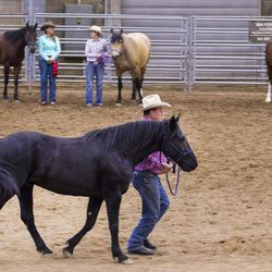 """James Huckaby leads his horse, Baxter Black, across the show arena during the showmanship contest during the championship round of the Wild Horse and Burro Show at the Legacy Events Center in Farmington on Friday, June 9, 2017. """"This horse was the biggest challenge,"""" says Huckaby. """"But now I can put my grandkids on him."""""""