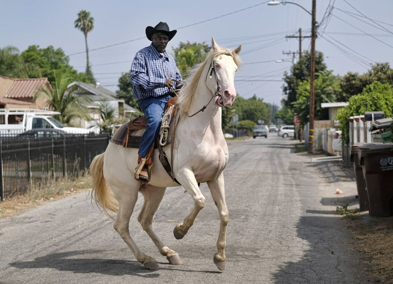 A man in a gingham shirt, blue jeans, and cowboy hat rides a white horse on a residential street.