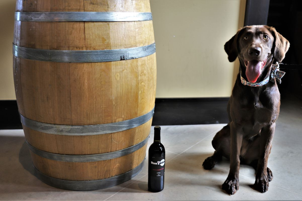 A wooden barrel, a bottle of dark wine, and a dark-colored dog with tongue hanging out.