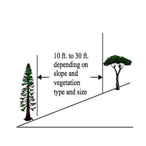 <p>Distance between trees for defensible-space landscaping</p>