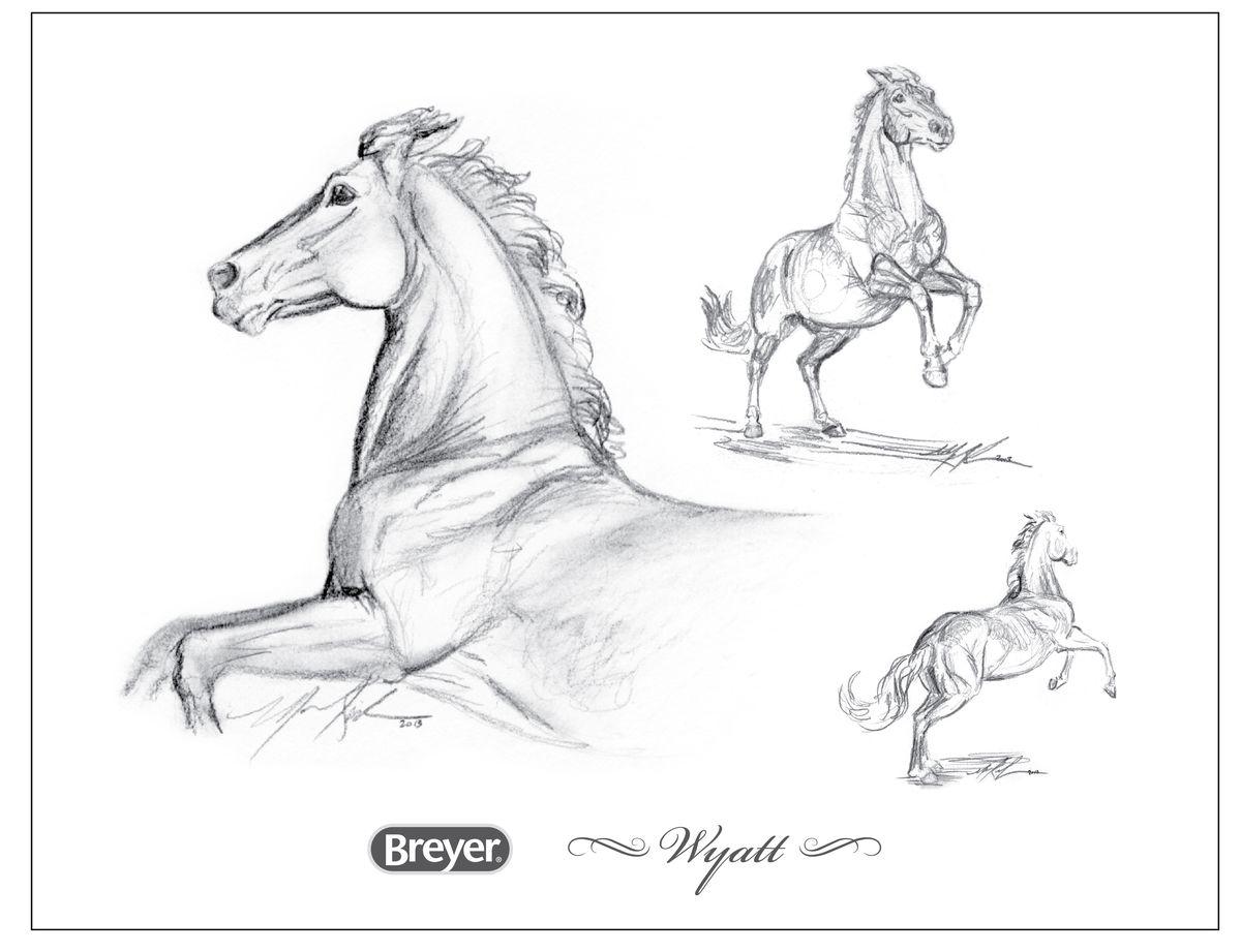 Breyer horse sketch of Wyatt the horse