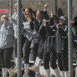The Clearfield bench celebrates as the Falcons score two runs during a softball game against Bountiful at Millcreek Junior High School in Bountiful on Wednesday, March 24, 2021.