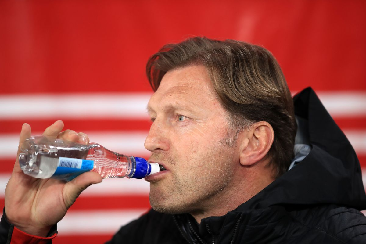 St. Mary's Musings reviews Southampton's 2018/19 Premier League season as Ralph Hasenhuttl saves the Saints from near-certain relegation under Mark Hughes