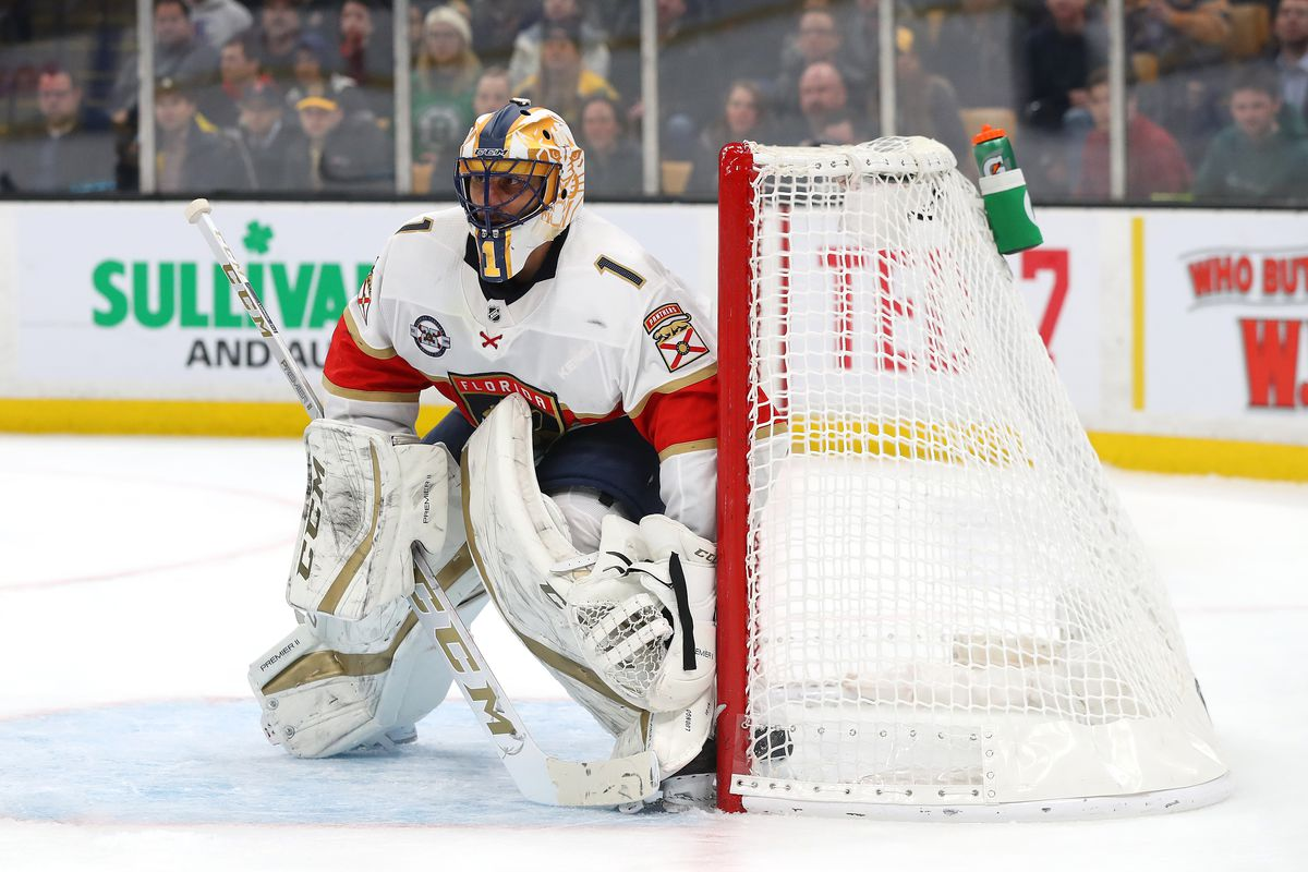 Florida Panthers Goaltender Roberto Luongo Has Retired Litter Box Cats