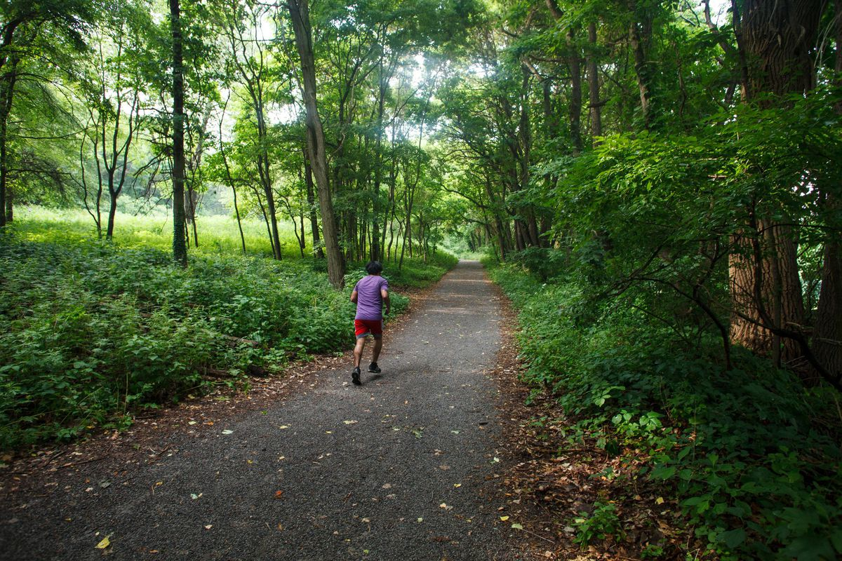 A man in a purple shirt and red shorts runs alone on a lush green running trail in Van Cortlandt Park.