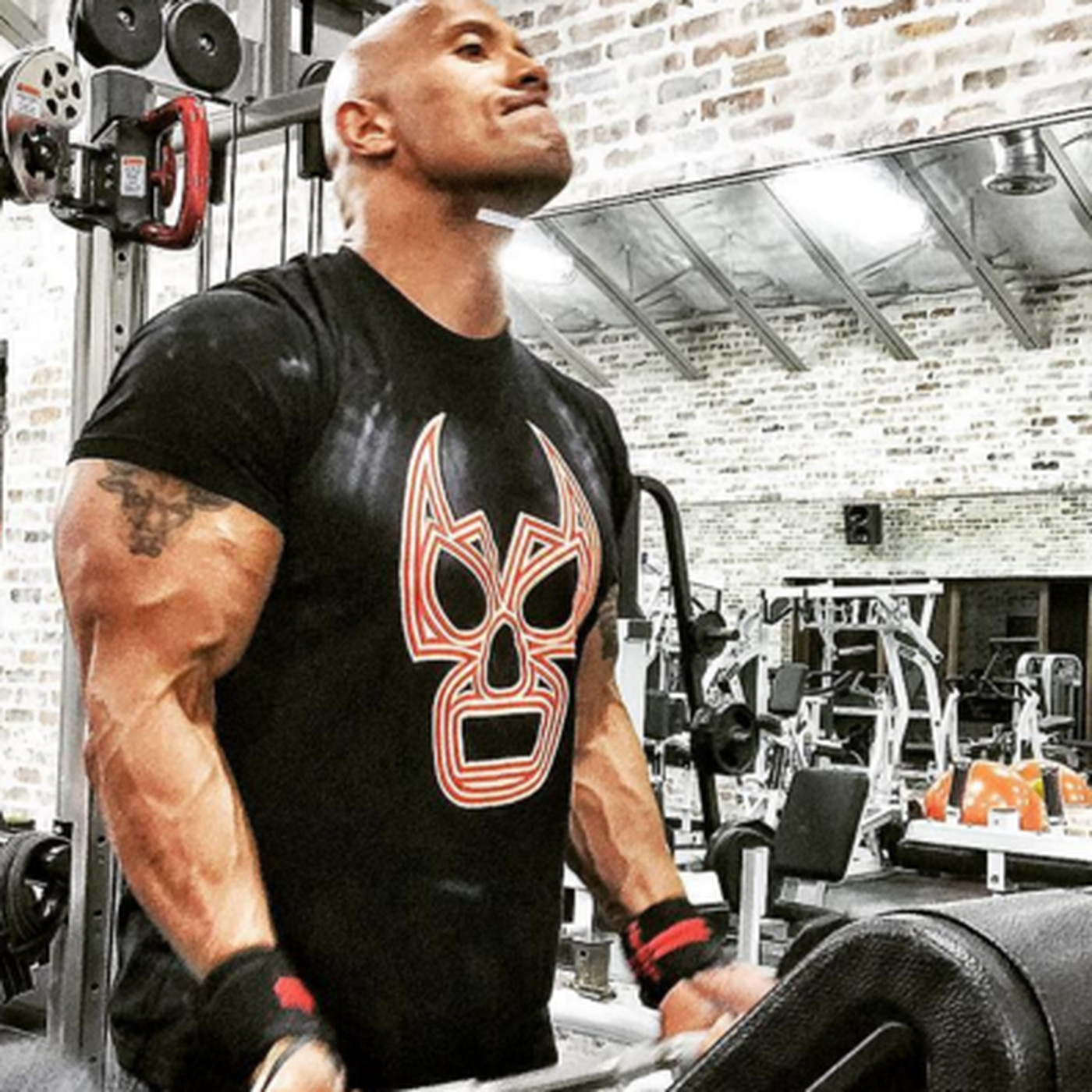 46f2301c The Rock represents Lucha Underground at the gym, on Instagram - Cageside  Seats