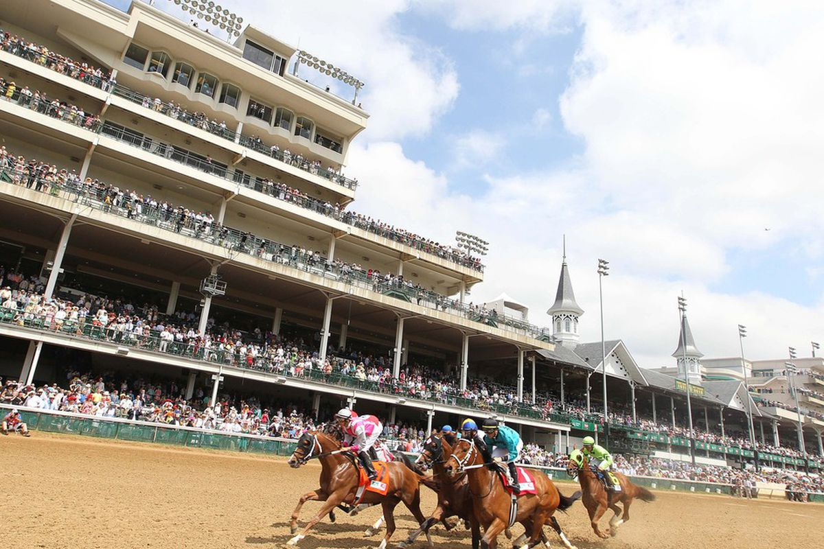 Kentucky Derby 2013 Prep Races Holy Bull Stakes Results