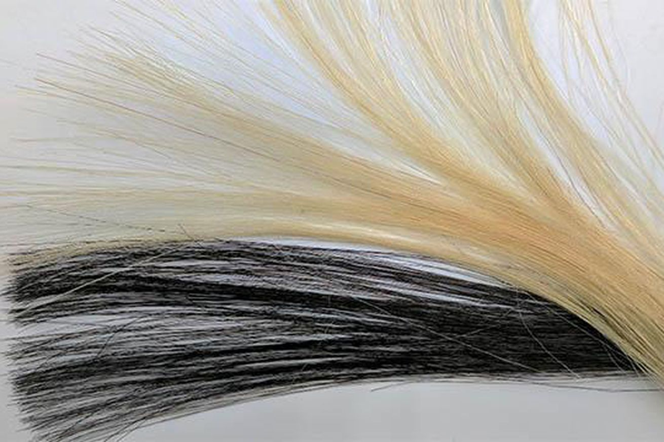 hair dye now with graphene to take away the frizz
