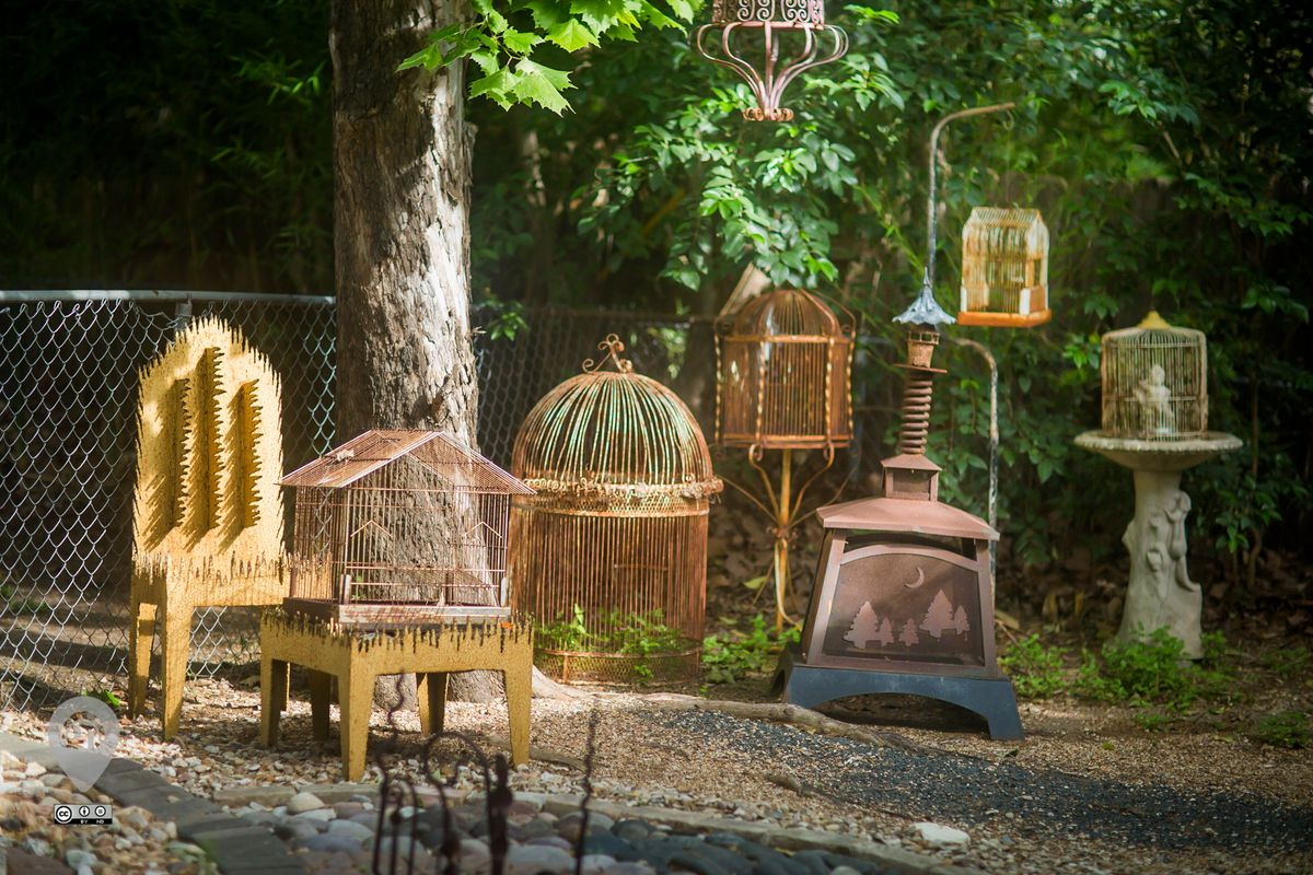 A verdant yard with several large, antique, and interesting bird cages placed artfully in it