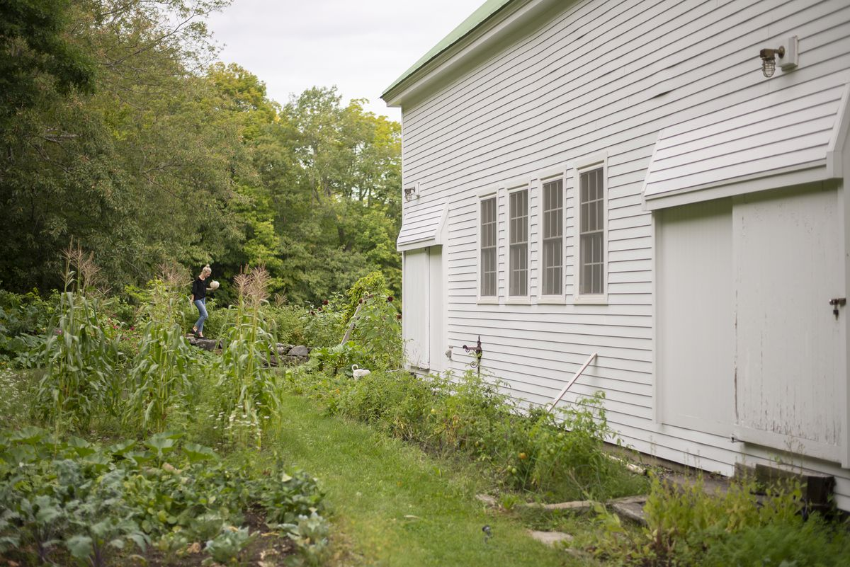 A vegetable garden next to the side of an old restored house.