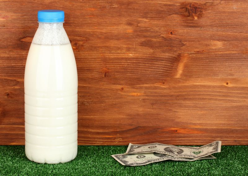 """Dollar_shutterstock_115470025 """"Fake milk"""": why the dairy industry is boiling over plant-based milks"""