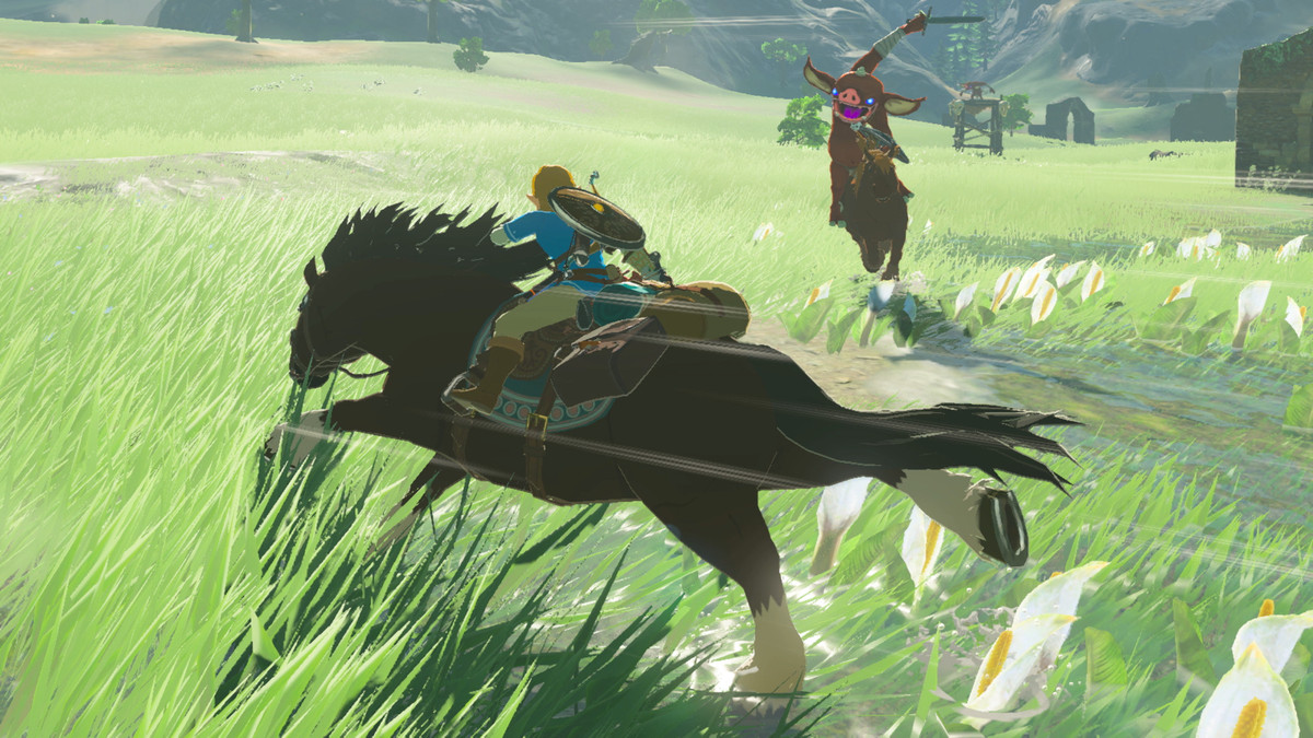 the legend of zelda: the breath of nature