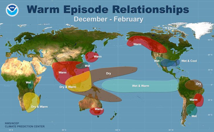 Typical effects of El Niño in the winter