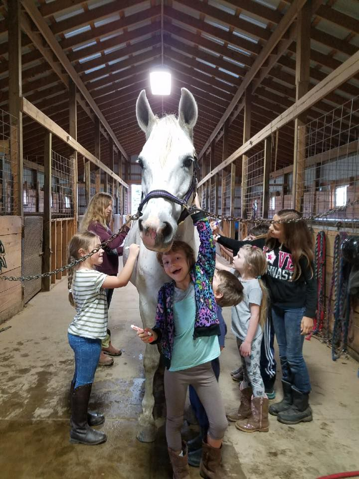 """Children work with a horse at the Spring Creek Equestrian Center — one of many places across the state where homeschool and private school students can take courses paid for by the state of Michigan through the """"shared time"""" program."""