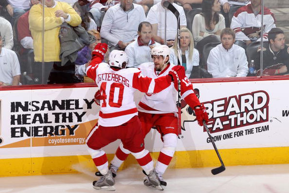 """Photo by Christian Petersen/Getty Images  Content © 2010 Getty Images All rights reserved.via <a href=""""http://cdn.picapp.com/ftp/Images/6/a/6/6/Detroit_Red_Wings_7e1c.jpg?adImageId=12732341&imageId=8646906"""">cdn.picapp.com</a>"""