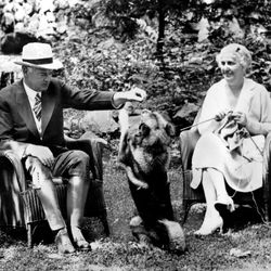 U.S. President Herbert C. Hoover and first lady Lou Henry Hoover enjoy their vacation with their Norwegian Elkhound, Weeji, at their Rapidan Camp, Va., in Aug. 1932.
