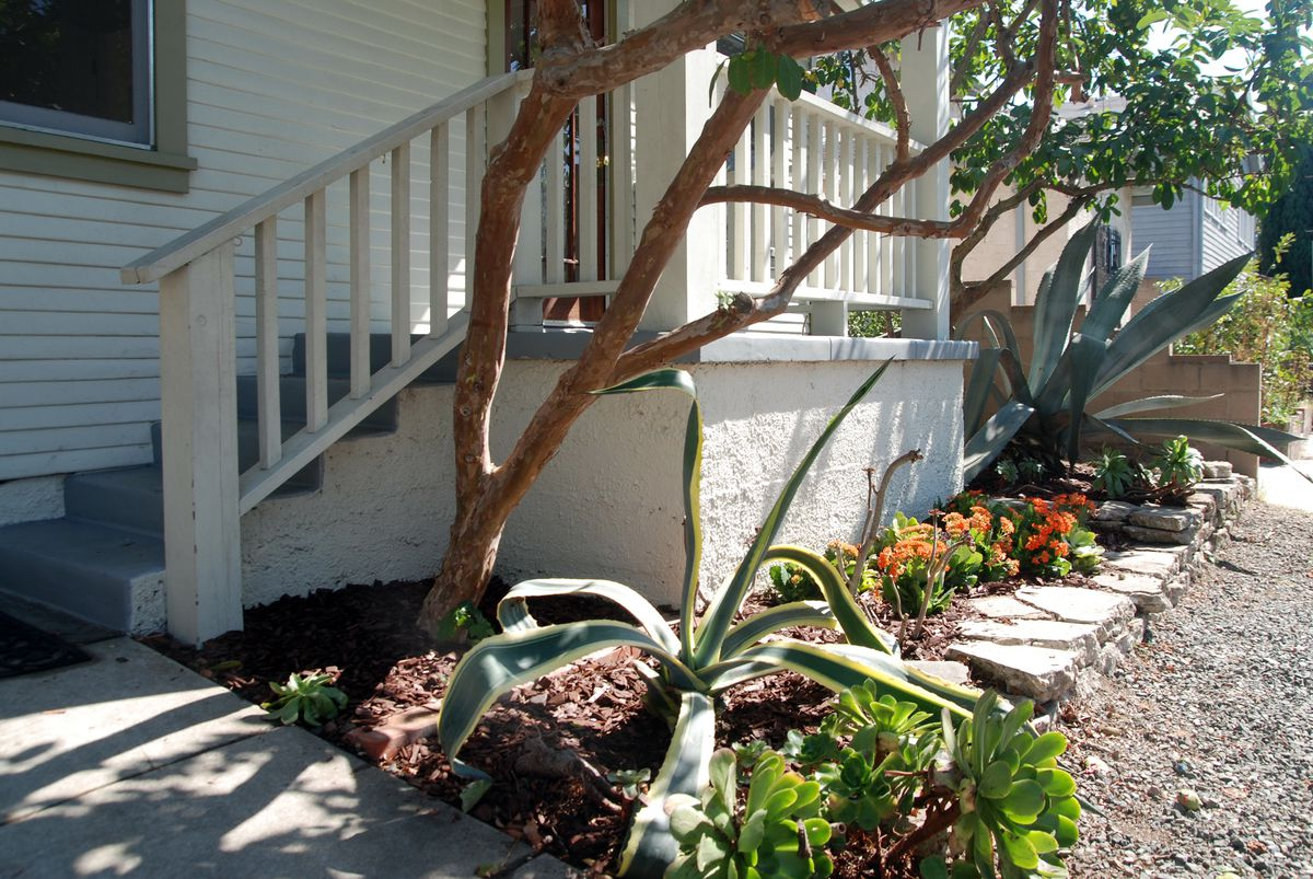 Front porch and garden