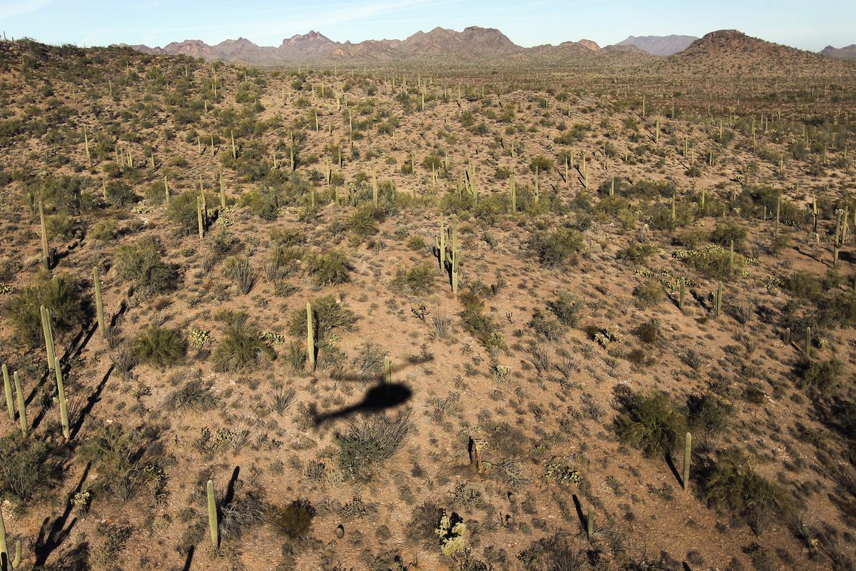 The shadow of a helicopter on the Sonoran Desert with mesas in the distance.