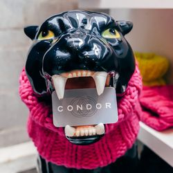 """Stroll up Elizabeth Street towards Houston and stop in at <b><a href=""""http://www.shopcondor.com/"""">Condor</a></b>  (259 Elizabeth) for cool-girl brands like Pendleton and Suno. Say hi to store bunny Merlin, and keep an eye out for New York-made merchandise"""