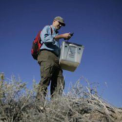 ADVANCE FOR WEEKEND, SEPT. 29 AND THEREAFTER - In this photo taken Friday, Sept. 21, 2012, Roy Averill-Murray, left, who oversees Desert Tortoise receovery for the U.S. Fish and Wildlife Service, checks his G.P.S. coordinates while hiking to release desert tortoises at the Nevada National Security Site in Mercury, Nev. The project was designed so that the federally protected reptiles could be observed after being reintroducted to desert habitat.