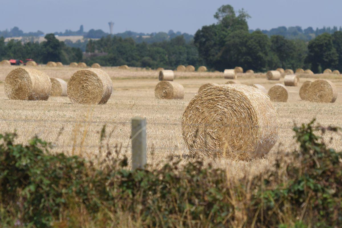 Harvests In Full Swing In Normandy