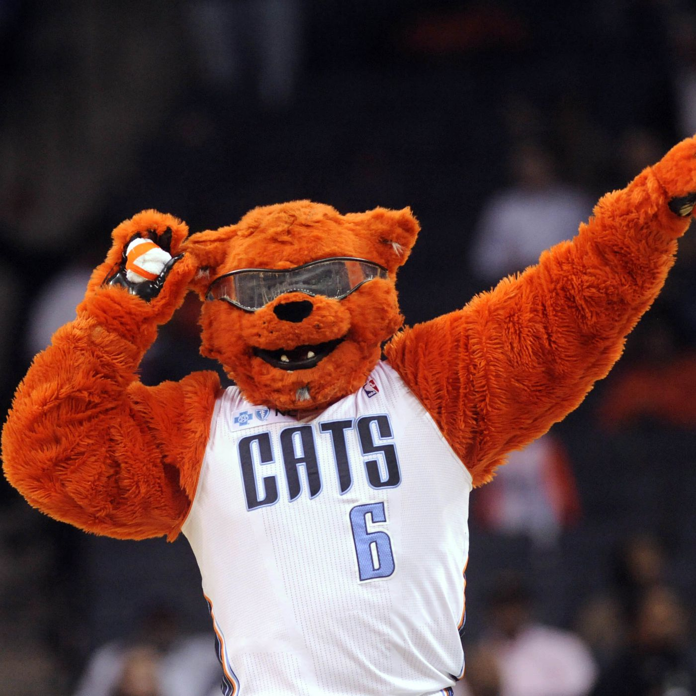 Charlotte Announces Historic Name Change Will Go Back To Bobcats Wrist Bear Red Next Season At The Hive