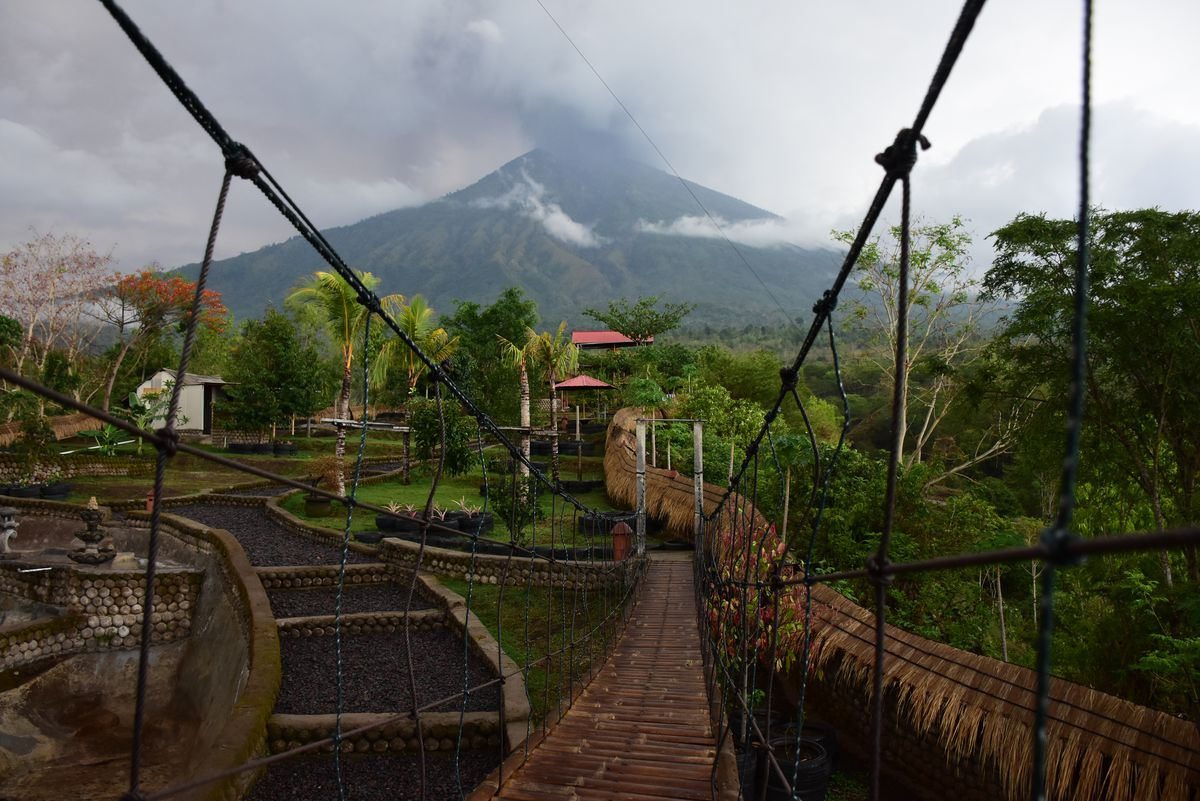 General view of Mount Agung during an eruption seen from Kubu sub-district in Karangasem Regency, on Indonesia's resort island of Bali on November 25, 2017.  Mount Agung, Bali, Indonesia, erupted phreatically for the second time by releasing thick gray smoke and ash with a height of 3 km from the top of the crater, November 25th 2017. However, not all the people who live in the dangerous zone don't want to evacuate. This because after two months being rumored to be erupting, nothing happened. (Photo by Keyza Widiatmika/NurPhoto via Getty Images)
