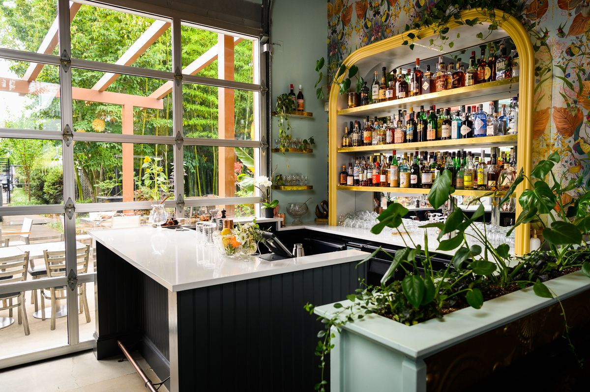 A small white bar in a restaurant with a colorful back bar and flowery wallpaper. It's filled with plants.