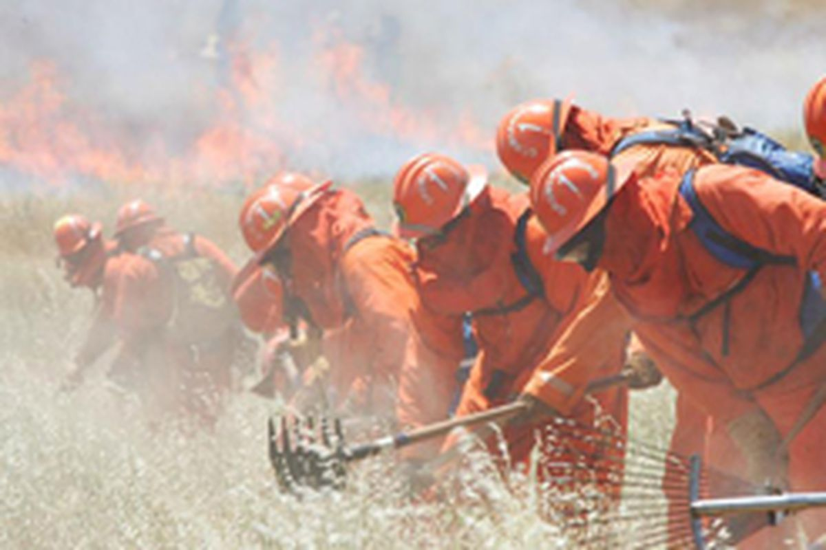 """Inmate firefighters working as part of a """"Conservation Camp"""" fire crew."""