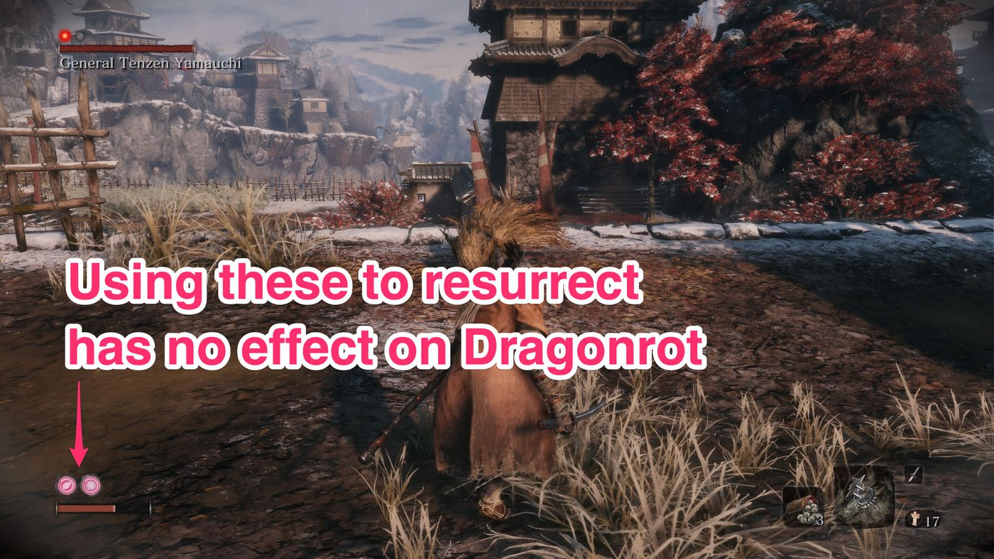 Sekiro Rot Essence and Dragonrot guide - Polygon
