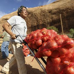 Jones Shortman moves bags of onions while volunteering at a drive-thru food bank, organized by Transitions Pantry, in Oljato-Monument Valley, San Juan County, on Thursday, April 30, 2020. TheNavajo Nation has one of the highest per capita COVID-19 infection rates in the country.