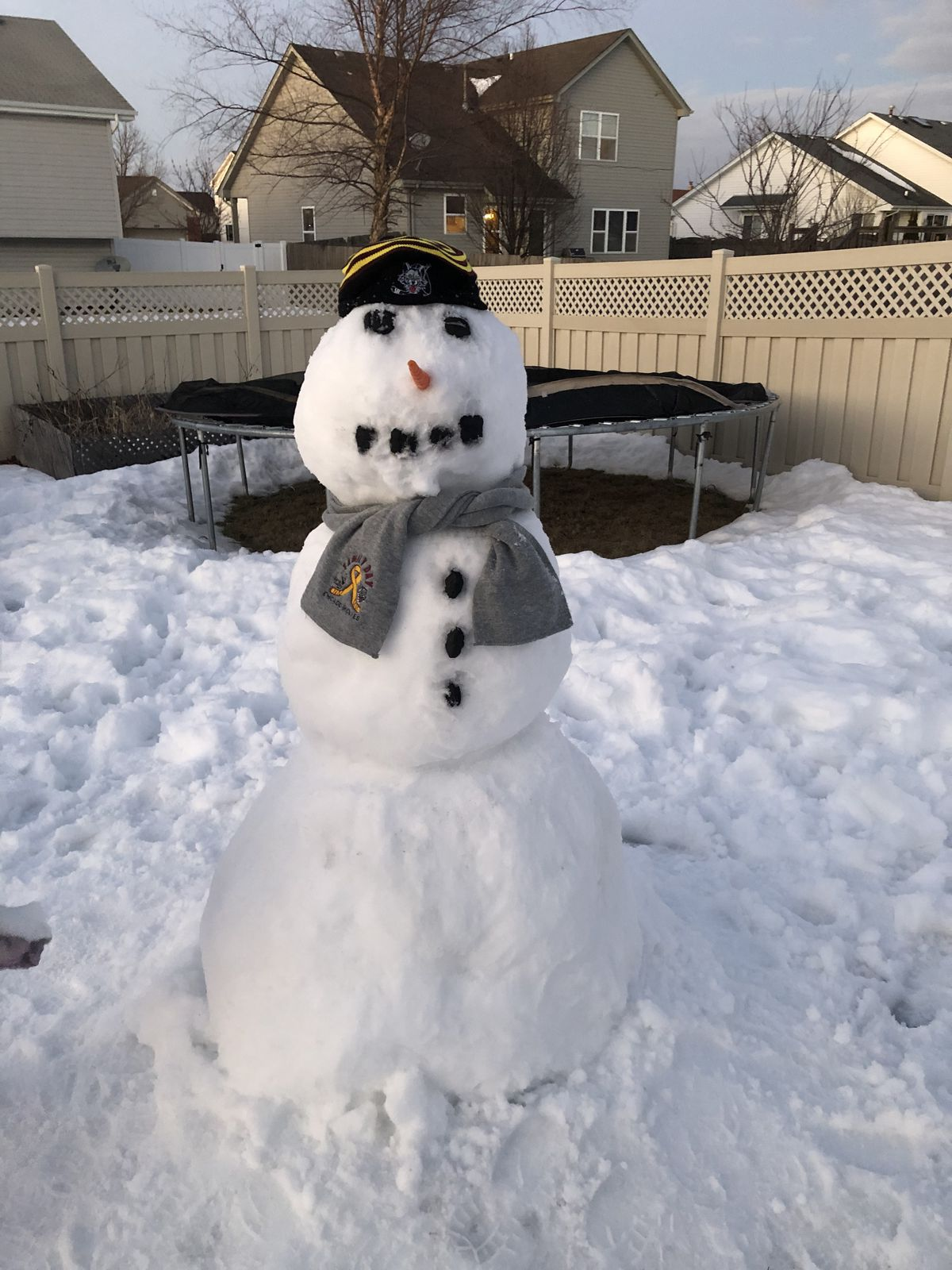 A chill snowman by Tyler D., 13, a seventh-grader at Liberty Junior High School in New Lenox.