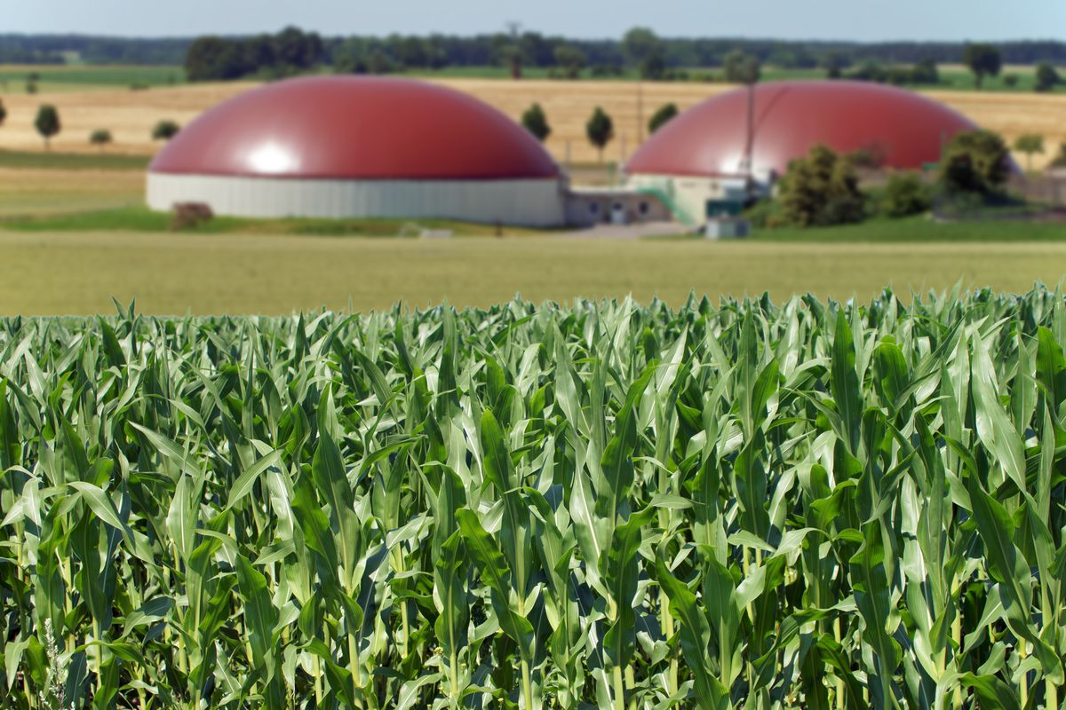 A biogas facility next to a cornfield.