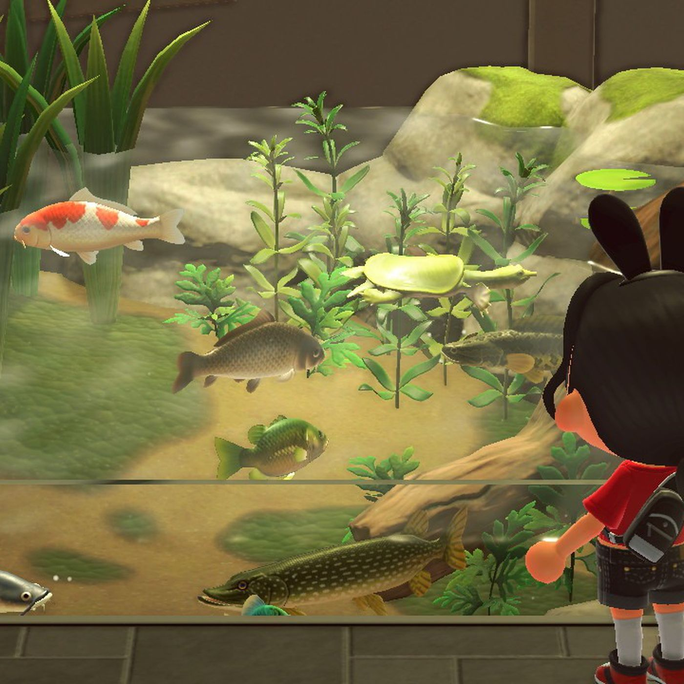 Animal Crossing New Horizons Turtles Are Now Pets