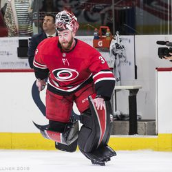 February 9, 2018. Carolina Hurricanes vs. Vancouver Canucks, You Can Play Night, PNC Arena, Raleigh, NC.
