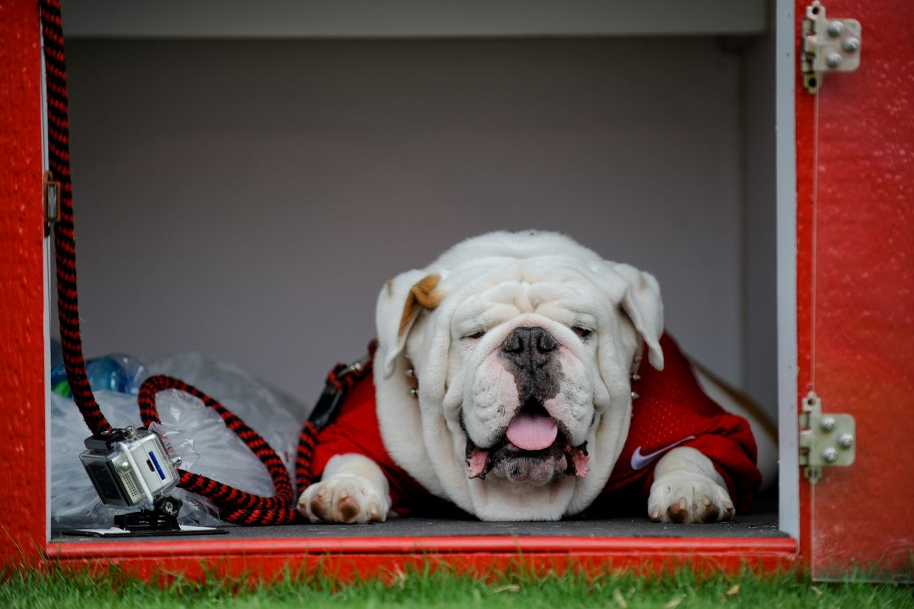 096564de6baf Odds, Ends, and Random Assorted Facts Regarding the Georgia Bulldogs ...