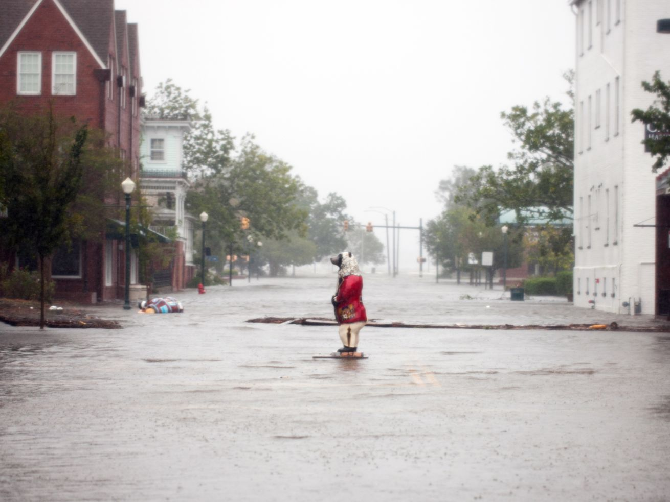 A bear statue stands amid flood waters in New Bern, North Carolina, September 14, 2018.