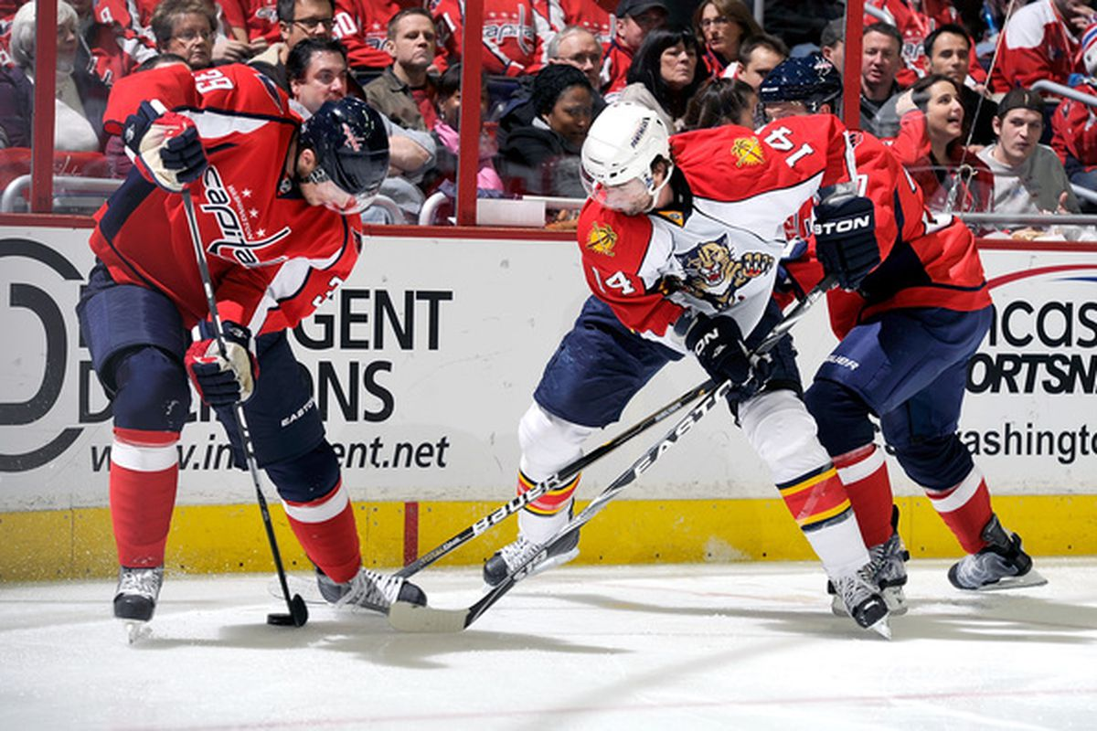 WASHINGTON - JANUARY 08:  David Steckel #39 of the Washington Capitals battles for the puck with Radek Dvorak #14 of the Florida Panthers at the Verizon Center on January 8 2011 in Washington DC.  (Photo by Greg Fiume/Getty Images)