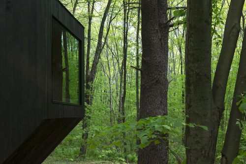 A black cabin surrounded by trees.