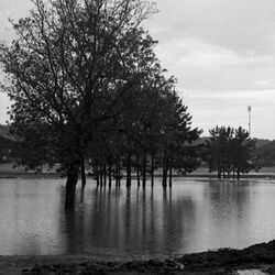 1967-Golf course near Doak Campbell Stadium inundated after heavy rain in Tallahassee.