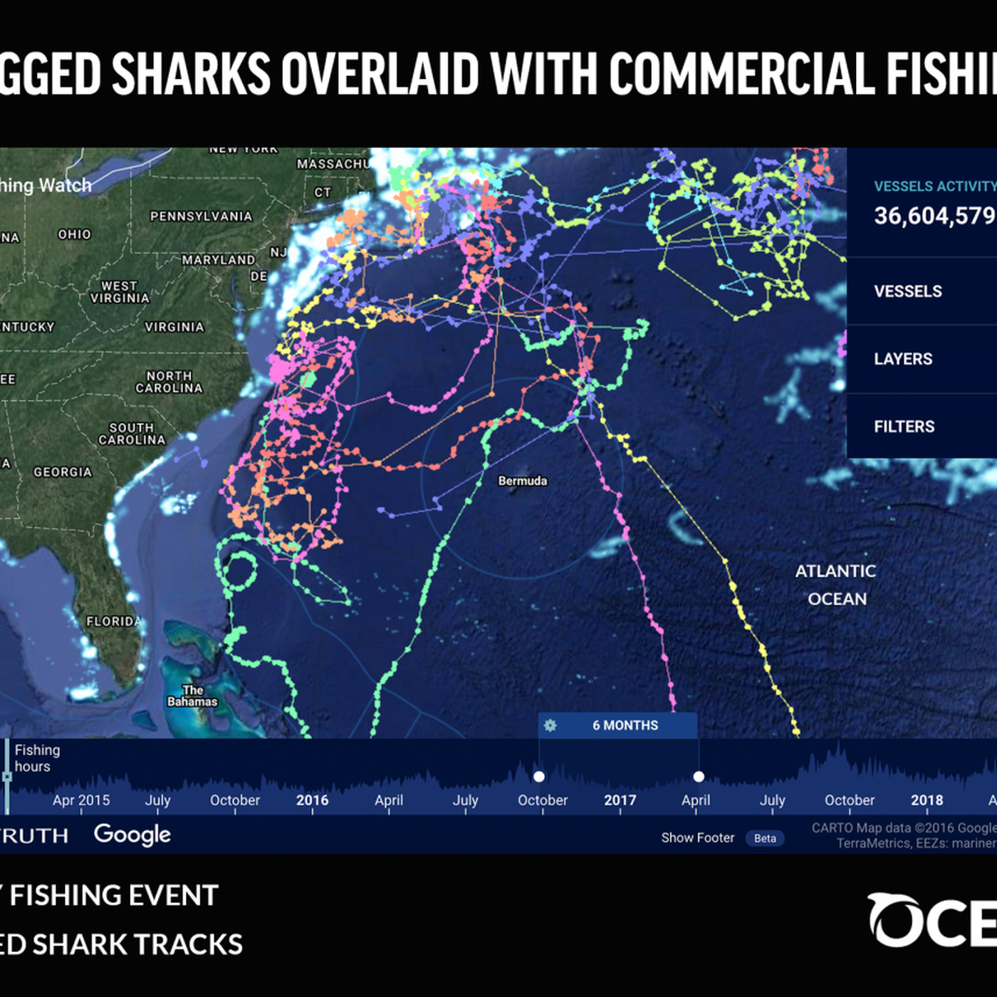 Shark Week 2018: this map shows where sharks and fishing