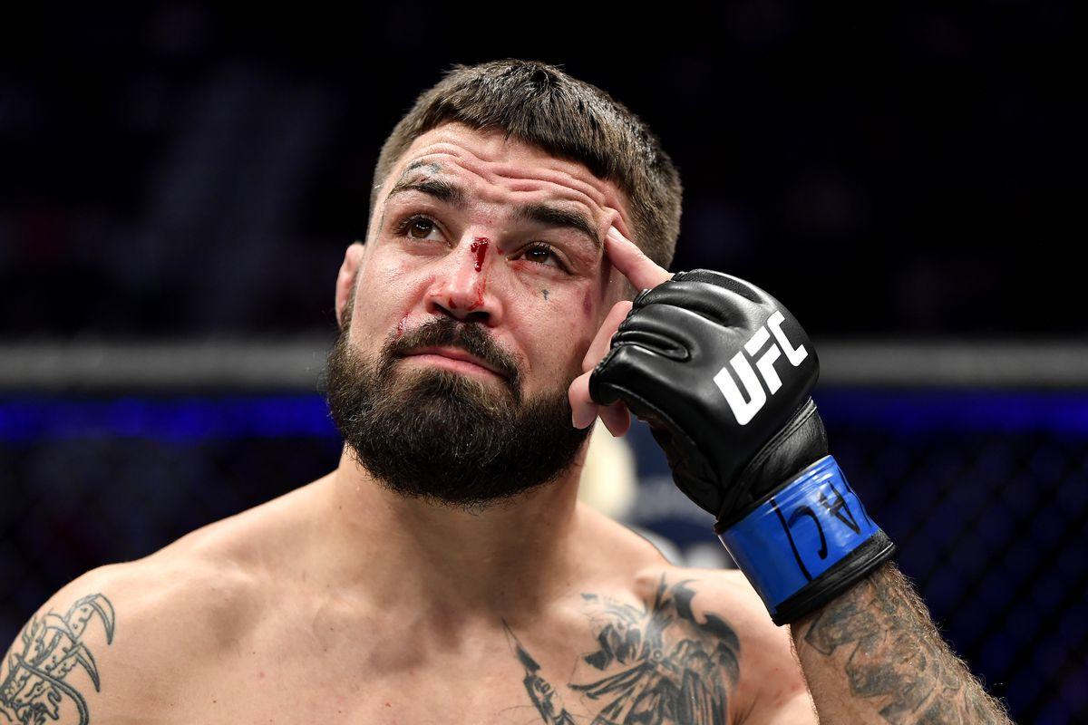 UFC 245: Neal v Perry